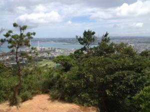 Ishikawa_City_from_Mount_Ishikawa